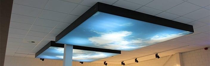 Akoestische palelen plafondmontage decoratie geluiddemping Blomsma Print&Sign